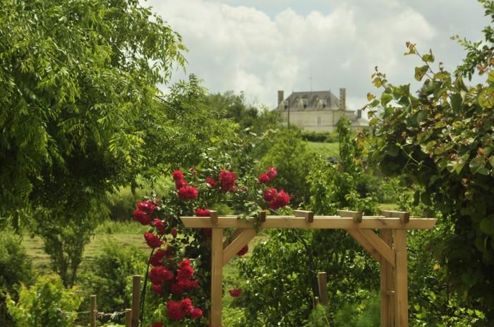 Parc d'un château