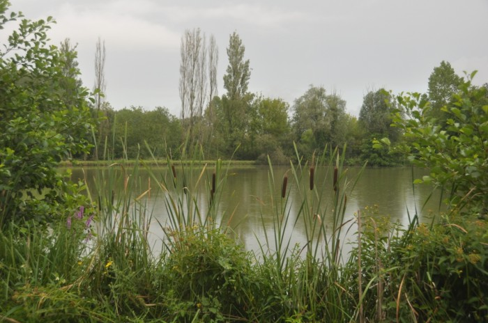 étang de pêche du camping aux meilleurs tarifs