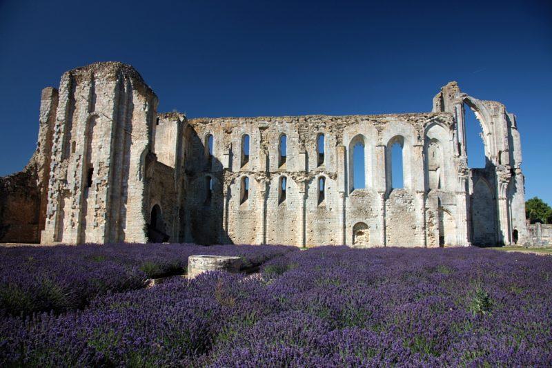 Vestiges Abbaye de Maillezais proche du camping