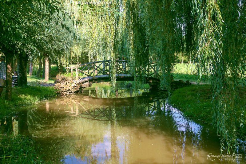 Fontaines et petits étangs camping proche des jardins de william christie