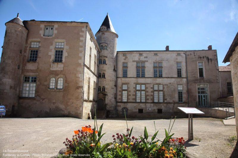 Les Rulières un camping proche de Fontenay le comte pour visiter la Sénéchaussée